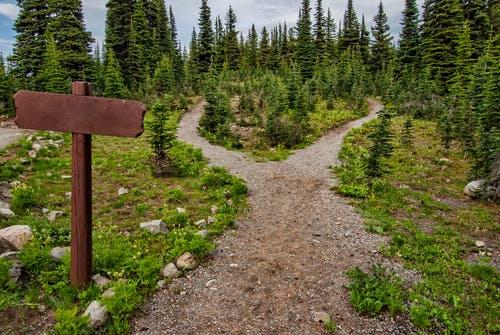 Comment vous mettre en condition pour participer à un trail ?